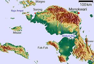 Melanotaenia fasinensis location